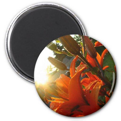 Orange Un Bloomed Refrigerator Magnet