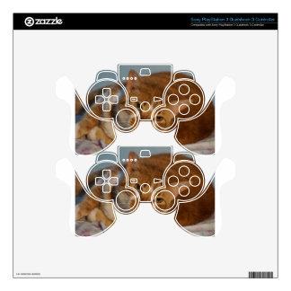 Orange & White Cat PS3 Controller Skin