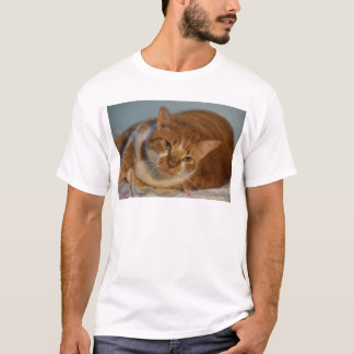 Orange & White Cat T-Shirt