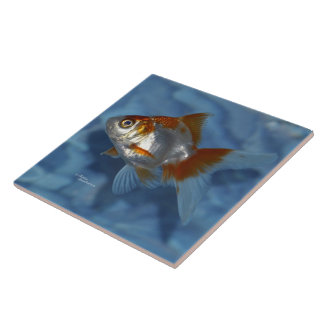 Orange white Ryukin Goldfish Tile