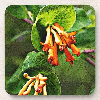 Orange Wildflowers Drink Coaster