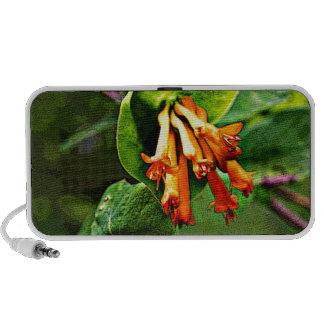 Orange Wildflowers Portable Speaker