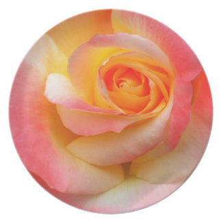 Orange, Yellow, and Pink Rose Multiple Products Party Plate