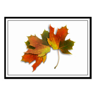 Orange & Yellow  Fall Leaves Business Card Template