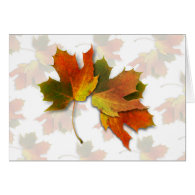 Orange & Yellow  Fall Leaves Greeting Cards