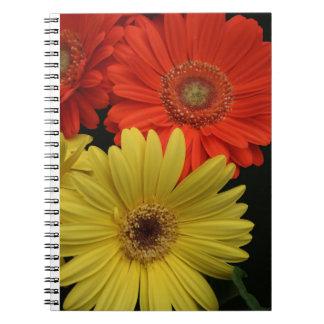 Orange & Yellow Gerbera Daisy blooming flowers Spiral Notebooks