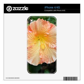 Orange yellow hibiscus flower 2 iPhone 4 skin