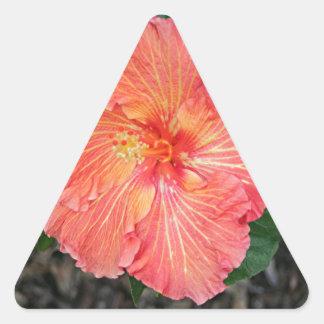 Orange yellow hibiscus flower triangle sticker