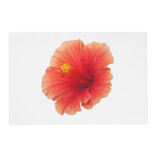 Orange Yellow Hibiscus Tropical Flower Floral Placemat