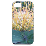 Orange/Yellow Lace Bud Blooming iPhone 5 Covers