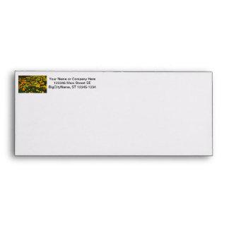 orange yellow marigold flowers field floral design envelope