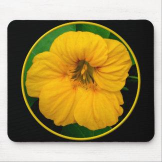 Orange-Yellow Nasturtium Mouse Pad