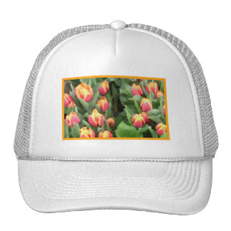 """Orange-Yellow """"Painted"""" Tulips Trucker Hat"""