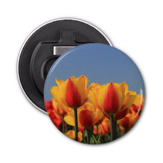 Orange yellow tulips by Thespringgarden Bottle Opener
