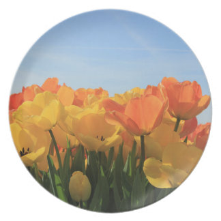 Orange yellow tulips by Thespringgarden Melamine Plate