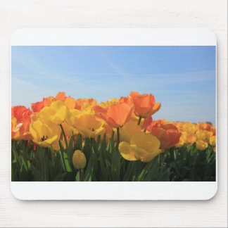 Orange yellow tulips by Thespringgarden Mouse Pad