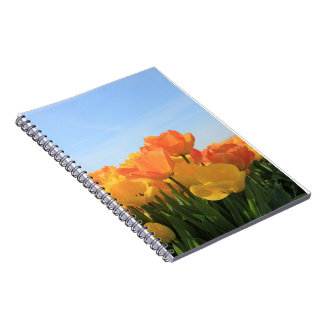 Orange yellow tulips by Thespringgarden Note Book