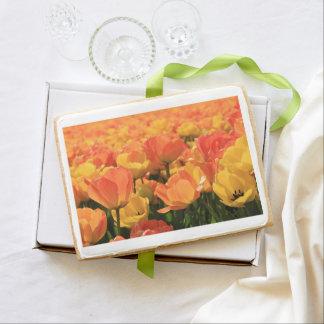 Orange yellow tulips by Thespringgarden Shortbread Cookie