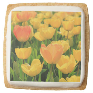 Orange yellow tulips by Thespringgarden Square Shortbread Cookie