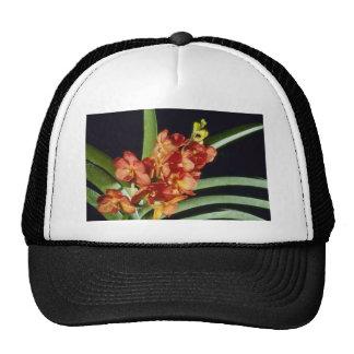 Orange Yip Sum Wah Ascocenda flowers Trucker Hats
