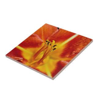 Orange You Glad? Tile