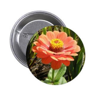 Orange Zinnia Flower Button