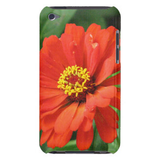 Orange Zinnia iTouch Case Barely There iPod Covers