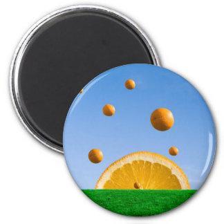 OrangeRain Fridge Magnets