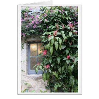 Orangerie Window Glenveigh Castle Card