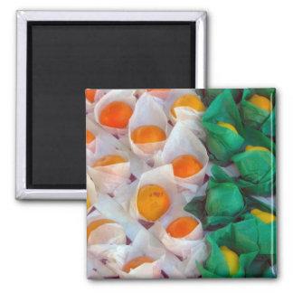 Oranges And Lemons Magnets