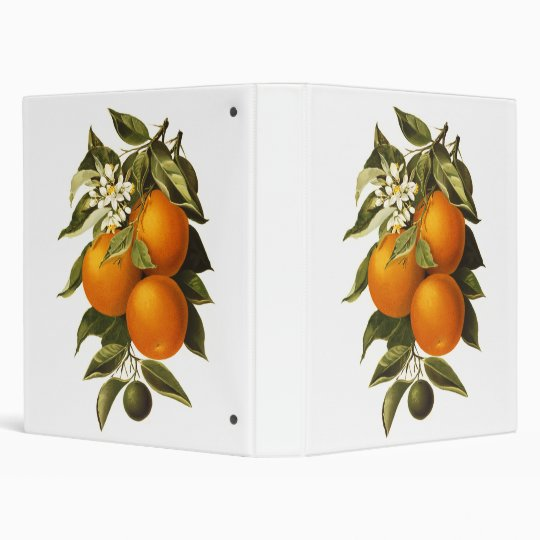 Oranges and Poppies Binder