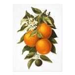 Oranges and Poppies Custom Invite