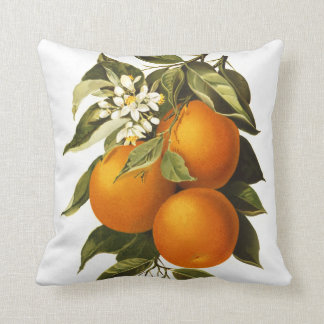Oranges and Poppies Throw Pillow