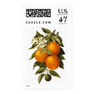 Oranges and Poppies Postage