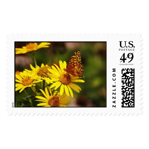Oranges and yellows postage