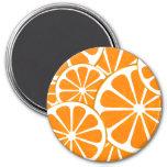 oranges. magnet