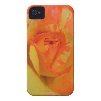 Oranges 'n' Lemons Rose iPhone case
