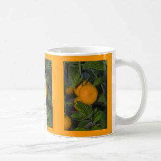 Oranges on the Tree Coffee Mug