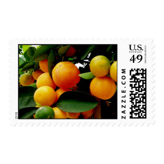 oranges postage