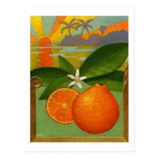 Oranges postcard tarjeta postal