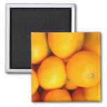 oranges refrigerator magnets