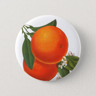 Oranges Vintage Crate Art Button