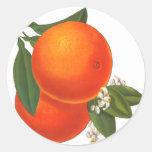 Oranges Vintage Crate Art Template Classic Round Sticker