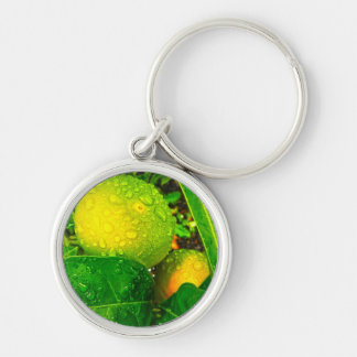 Oranges with Rain Drops Keychain