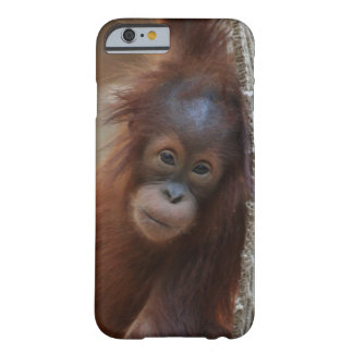OrangUtan20150904 Funda Barely There iPhone 6