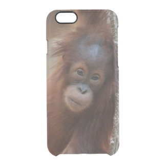 OrangUtan20150904 Uncommon Clearly™ Deflector iPhone 6 Case