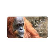 Orangutan Address Labels
