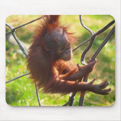 Orangután adorable del bebé alfombrilla de ratones