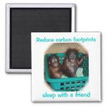 Orangutan Advice Carbon Footprints Magnets