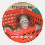 Orangután Alfred del bebé Pegatina